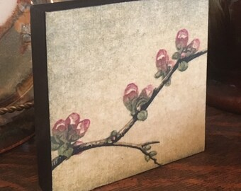 Woodblock Reduction Print Mounted Hand Pulled Fine Art Print - Ready To Hang Wall Art Blossoms Block Print