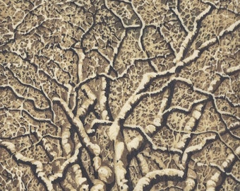 Packaged Print Studio Sale - Tree No. 23 OOAK hand-pulled woodblock reduction moku haga fine art print matted and ready to frame