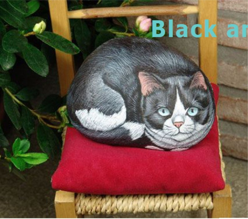 How to paint on rock a black and white cat  Rock Painting pdf image 0