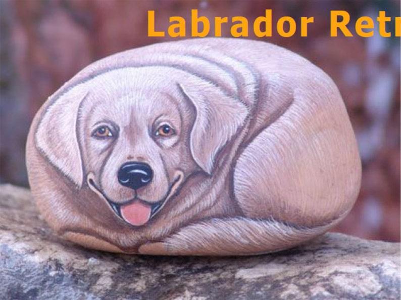 Rock Painting Tutorial  How to paint a Labrador Retriever dog image 0