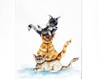 Cat Pole