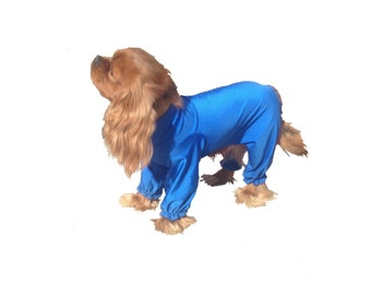 Dog Grooming Pajamas, custom dog grooming suit, dog grooming, spandex dog suit, keeps dog coat clean.