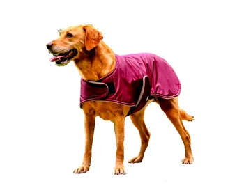 Winter Dog Coat, custom dog coat, waterproof dog coat, adjustable dog coat