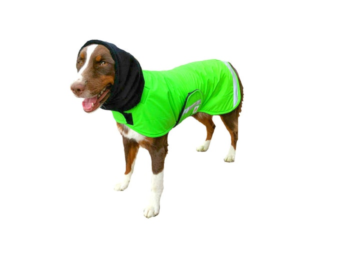 Featured listing image: Ultra Winter Dog Coat with reflective strips and detachable snood/turtleneck, custom dog coat, ultrex dog coat with chest strap for your dog