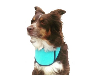 Dog Cool Collar, custom dog cooling collar, dog cooler with ice pocket for super cooling, made just for your dog