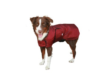 SALE!!! Readymade Small/Medium Winter Dog Coat, custom dog coat, tough dog coat, diamond ripstop dog coat, adjustable dog coat