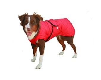 Quilted Winter Dog Coat, dog coat, custom dog coat, Red dog coat, warm dog coat with quilted nylon and tummy panel