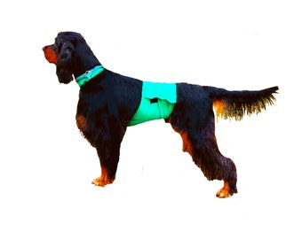 Dog Pee Coat, dog speedo, dog grooming coat, dog coat protector, spandex dog coat, dog swimsuit