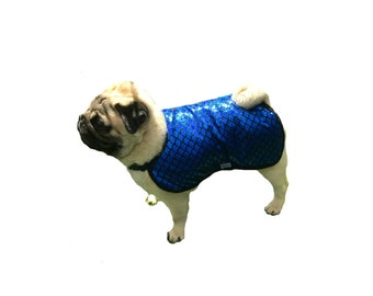 Ready Made Dog Show Cool Coat, designer dog cool coat, custom dog cool coat, dog cooler with fashion trim, fancy dog cool co