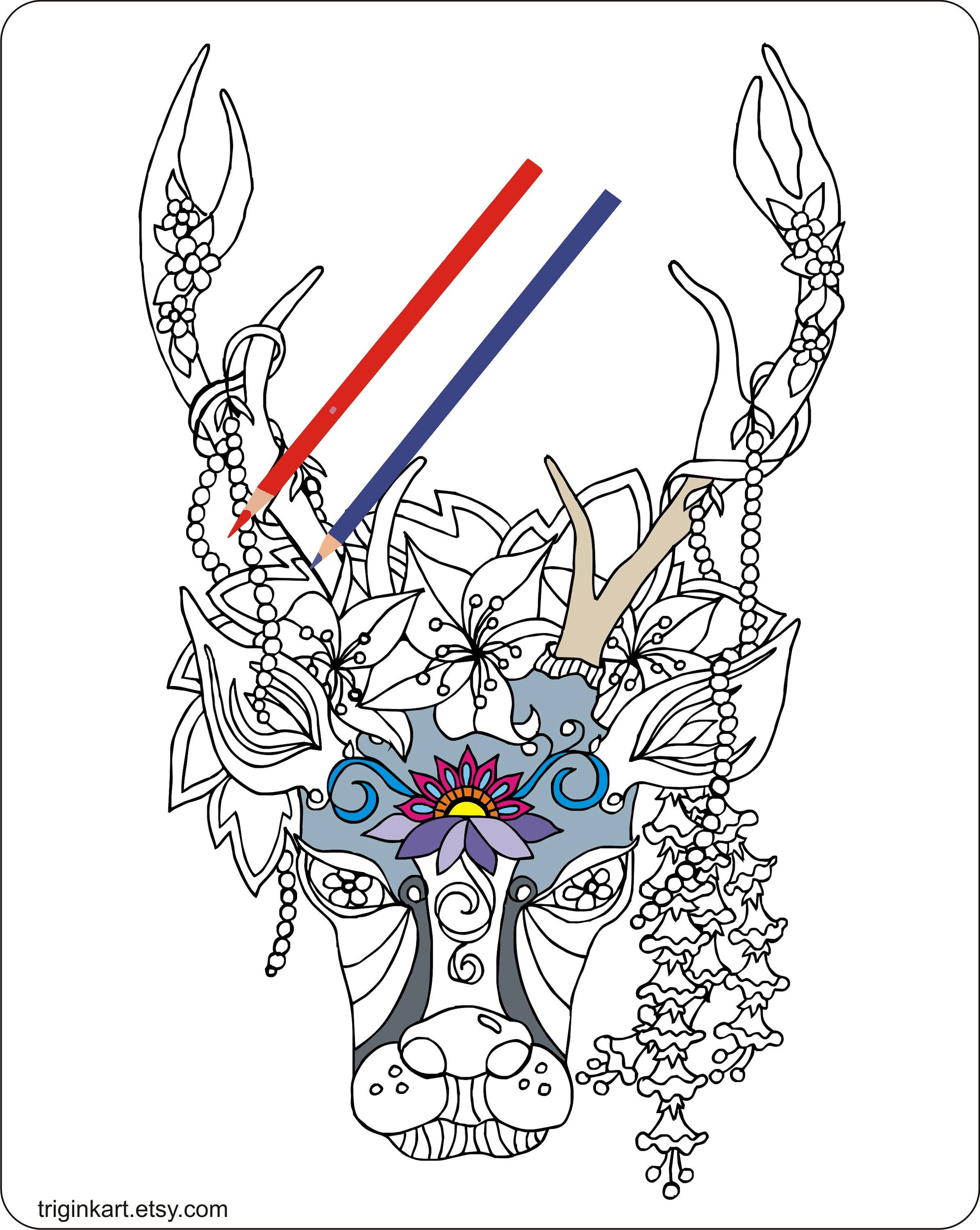 Deer Buck Lillys Adult coloring page | Etsy
