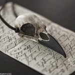 Raven Skull Pendant - Resin Bird Skull Necklace - Gothic Taxidermy Faux Bone Jewelry