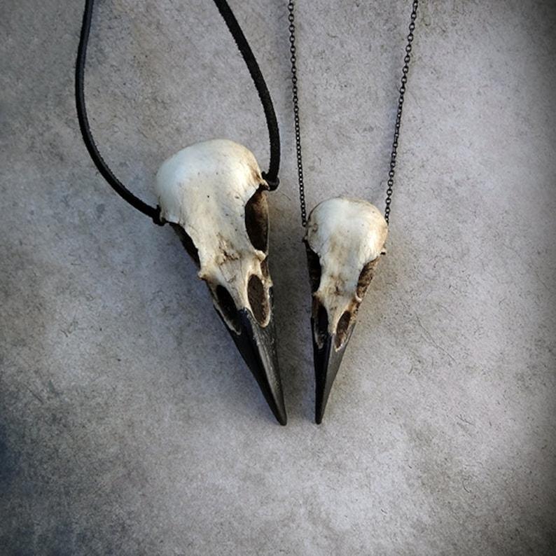 Raven Skull Duo: Bird Skull Necklace Set Save 6% Zombie image 0
