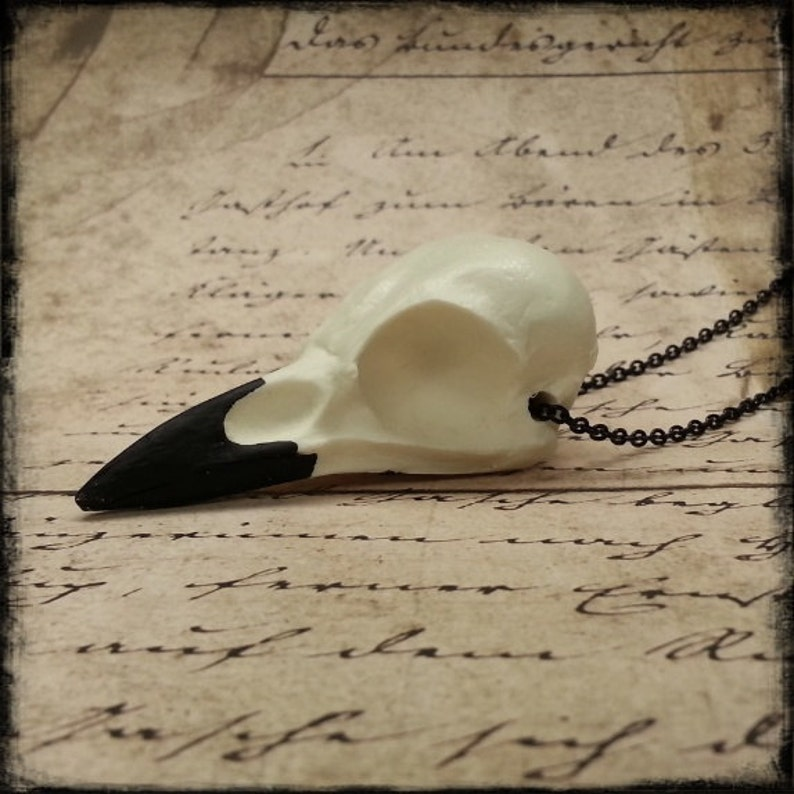 Natural Crow Skull Pendant Necklace Gothic Gift Idea Cast image 0