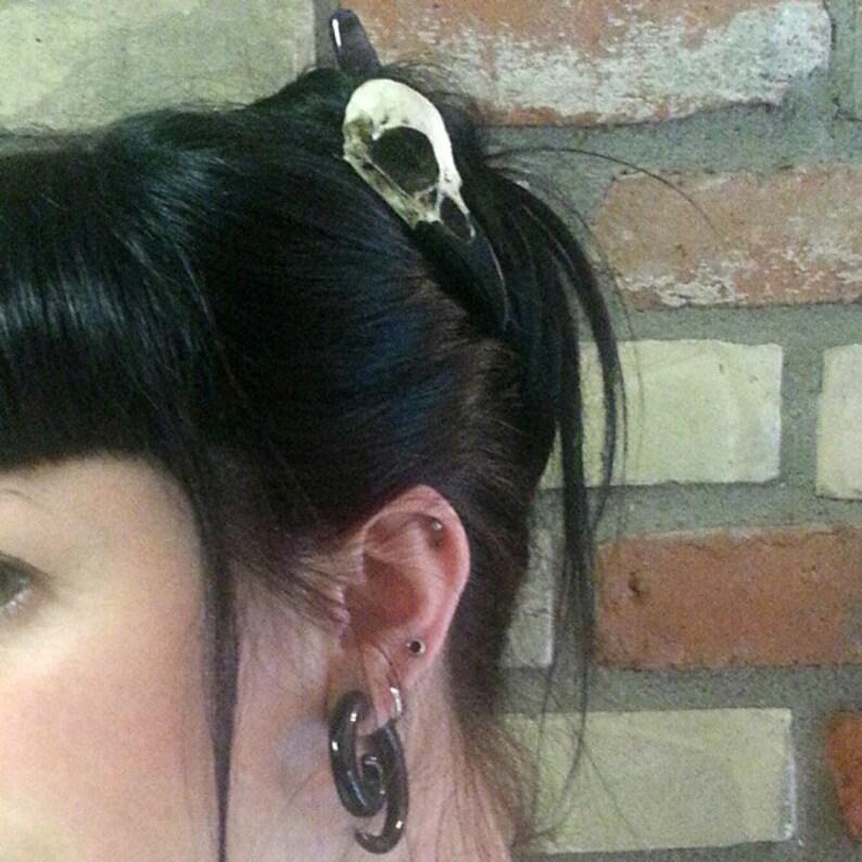 Mini Raven Skull Hair Clip Halloween Resin Cast Skull Hair image 0