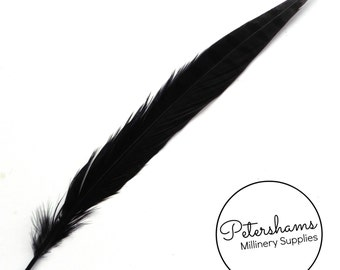 Dyed Pheasant Side Tail Feather for Millinery, Hat Making (Single Feather) 30-35cm - Black
