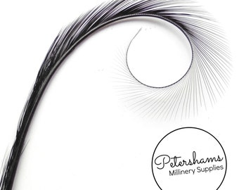 Burnt & Curled and Dyed Pheasant Quill Feather for Millinery, Hat Making Single Feather - Black
