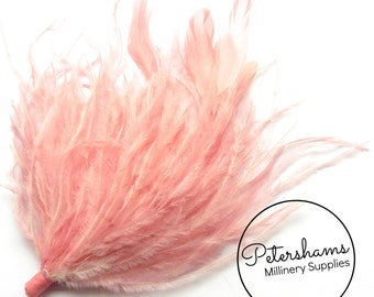 Ostrich & Stripped Coque Feather Millinery Fascinator Hat Mount - Dusky Pink