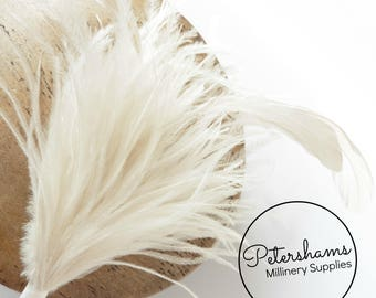 Ostrich & Stripped Coque Feather Millinery Fascinator Hat Mount - Ivory