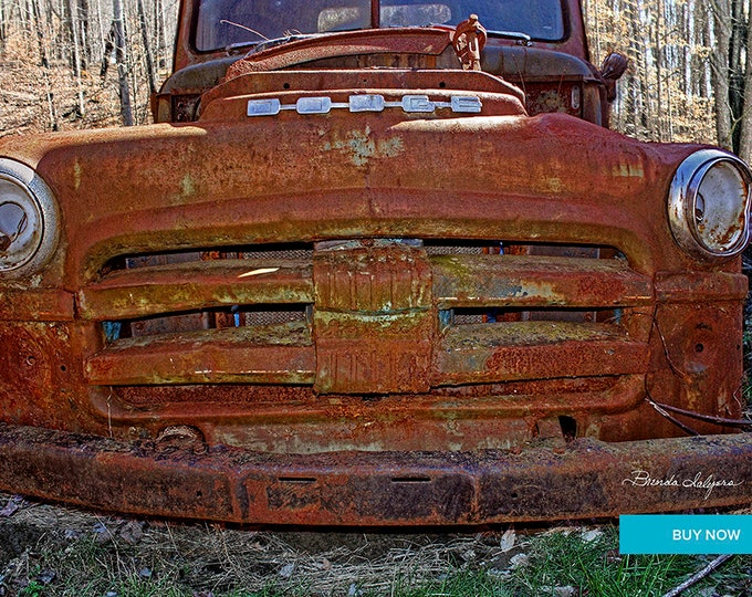 Big Mouth Dodge Farmers Kentucky Giclee Print on Fine Art Paper Canvas or Wood by Brenda Salyers by Brenda Salyers