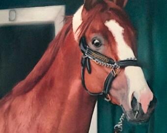 Justify,  Kentucky Derby, Belmont, Preakness Winner Giclee Prints on Canvas Paper or Wood by Brenda Salyers by Brenda Salyers