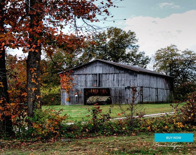 Tobacco Barn Frenchburg Kentucky Fine Art Print on Paper Canvas or Wood by Brenda Salyers by Brenda Salyers