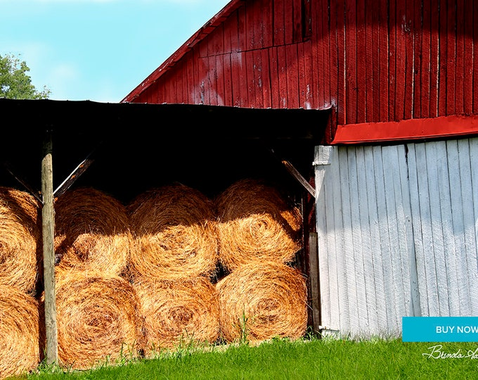 Barn with Hay Morehead Kentucky Fine Art Print on Paper canvas or Wood by Brenda Salyers by Brenda Salyers