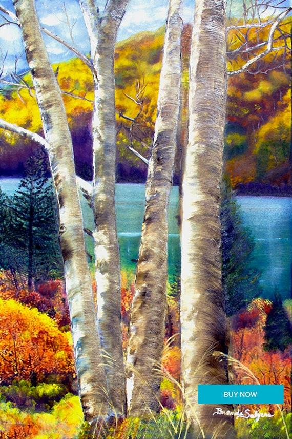 Trees at Cave Run Lake Kentucky Fine Art Print on Paper Canvas Wood by Brenda Salyers by Brenda Salyers