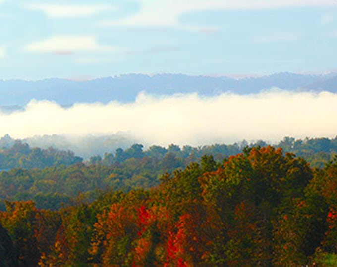 Hills of Morehead by Brenda Salyers, Fine Art Giclee Print on Paper Canvas or Wood by Brenda Salyers by Brenda Salyers