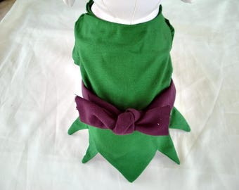 Dogs, Cats, Pets PETER PAN Costume