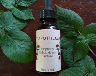 Wildcrafted Raspberry leaf and whole berry (Rubus idaeus) tincture
