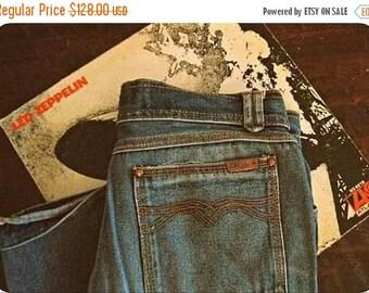 Vintage 70s ZEPPELIN jeans / Hippie Boho denim jeans / 1970s straight leg jeans 30 x34