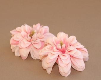 2 Two Tone Pink Wild Dahlia