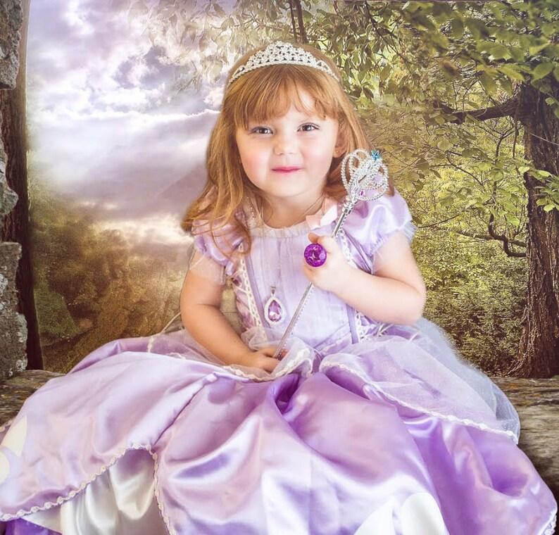 fe9b1e638 CLOSEOUT Sofia Inspired princess birthday Costume dress size | Etsy