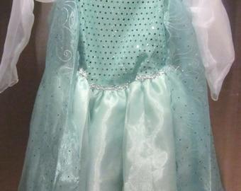 ELsa Inspired Costume Birthday girl toddler princess dress size 6