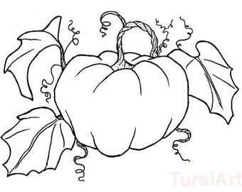 12 Pumpkin Coloring Postcards A Dozen Fall Harvest Cards To Color And Mail Halloween Or Thanksgiving Mailart By TursiArt Page