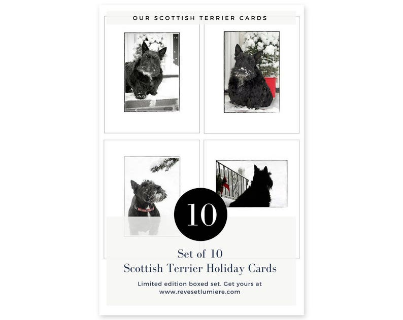 Scottish Terrier Christmas Cards  Scottie Dog Holiday Cards  image 0