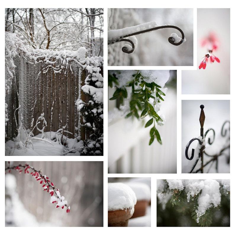 Snow Photography  Winter Invitations  Winter Scenes  image 0