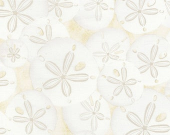 Timeless Treasures  - Beach Haven - Sand Dollars - Fabric by the Yard C5352-CRM