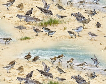 Elizabeths Studio - Coastal Dreams - Sandpipers - Sand - Cotton Fabric by the Yard or Select Length 593E-SAND