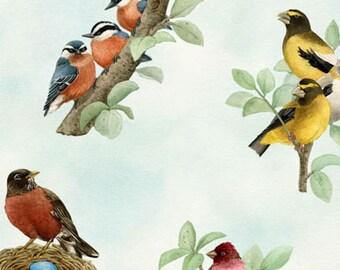 Elizabeths Studio - Beautiful Birds - Song Birds - Azure - Fabric by the Yard 4310E-AZURE