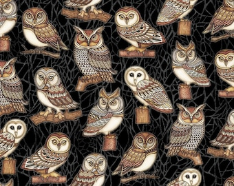 Quilting Treasures - Where The Wise Things Are - Owl One Way - Black - Fabric by the Yard 26528-J