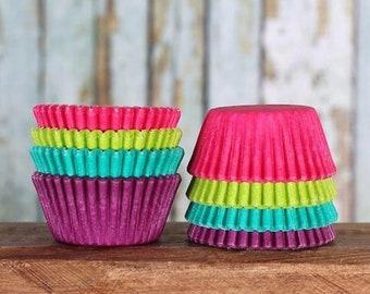 Mini Cupcake Liners: Jewel Cupcake Liners, Mini Baking Cups, Pink Cupcake Liners, Candy Cups, Cupcake Making (100)