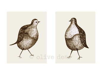Pigeon pair, double portrait - original hand drawn fine art pigment print, on quality heavy weight edition paper, by Olive Dear