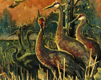 Dawn Cranes - Sandhill Cranes - Limited Edition Reproduction Giclee Print in 16x20 black mat