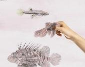 Magnetic Fish Wallpaper – Pink