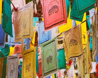 Colorful animal prayer flags photograph