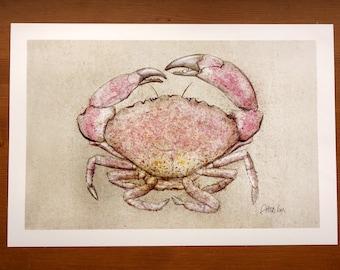 Stone Crab (13 x 19)