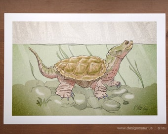 Snapping Turtle (13 x 19)