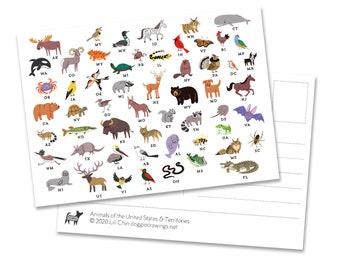 Animals of the USA POSTCARDS (5)