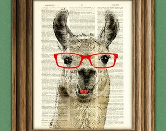 Llama Loves the Drama! Llama Smarty Pants with red glasses illustration beautifully upcycled dictionary page book art print